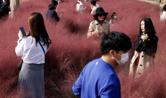 韩国生育率连续两年全球最低,去年韩国死亡人数首超新出生人数